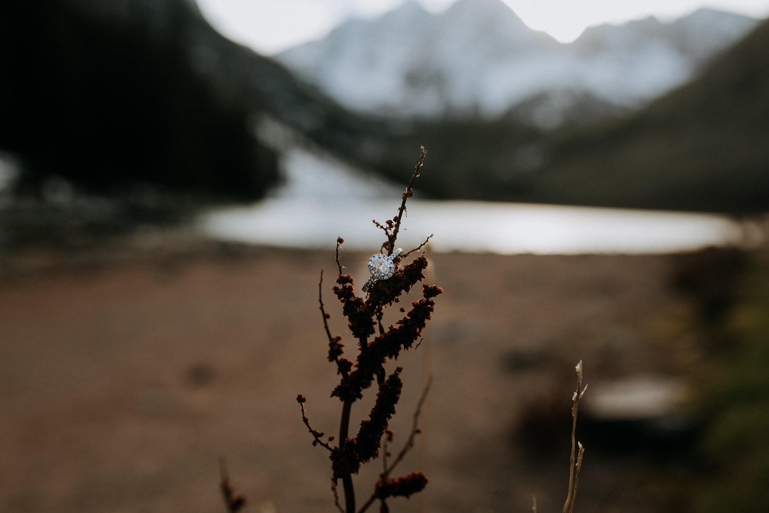 Ashleykemmerphoto-5328.jpg