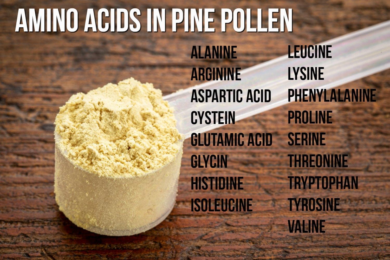 Amino Acids in Pine Pollen