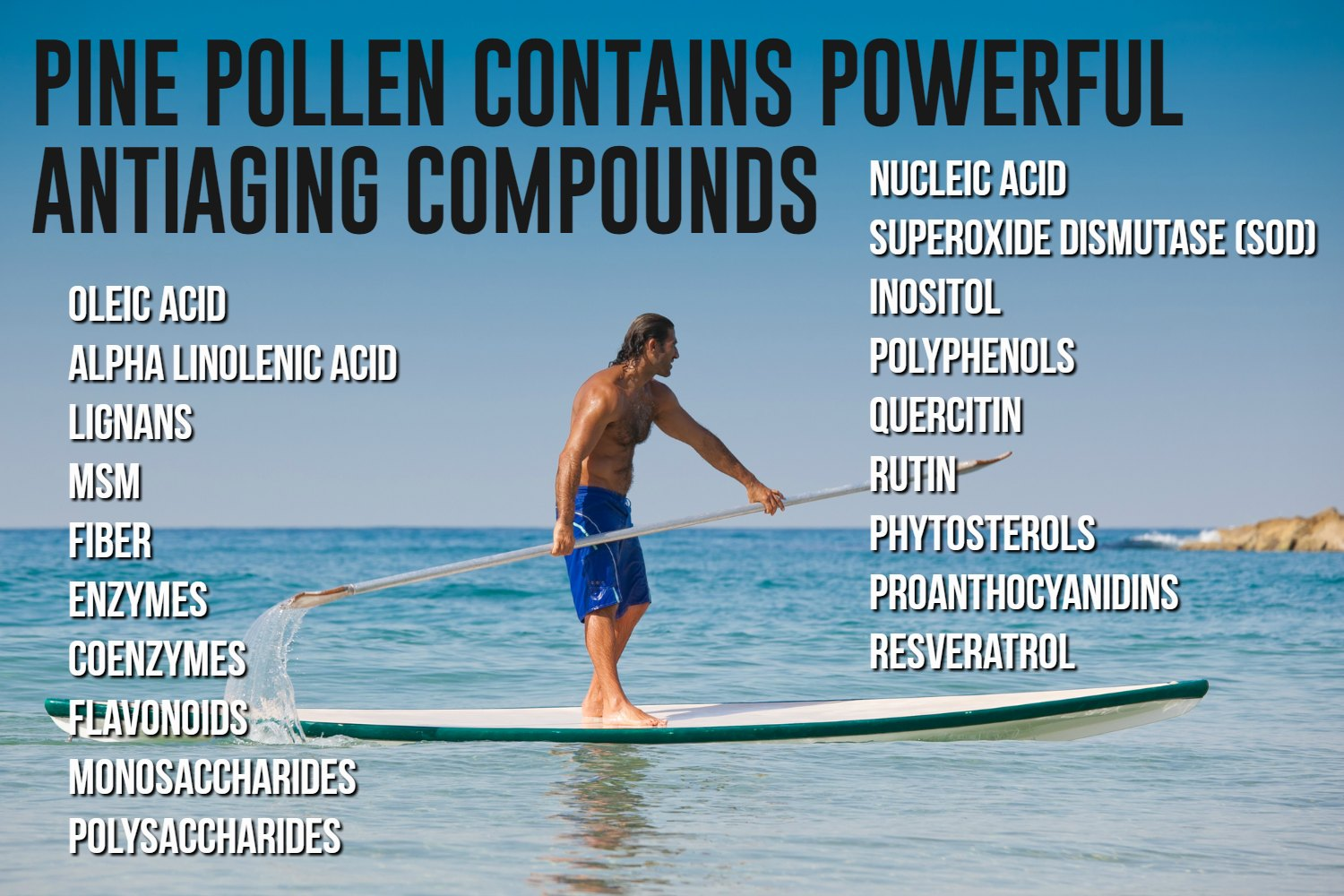 Pine Pollen Contains Anti-Aging Compounds