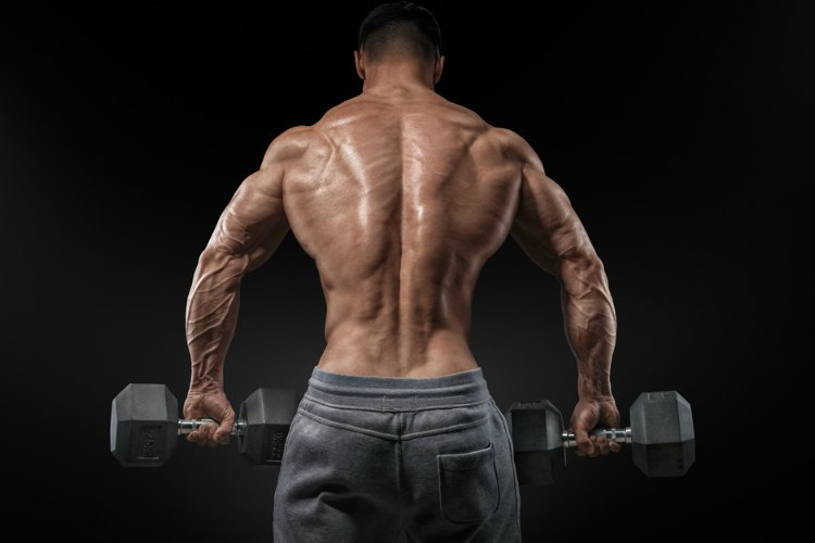 How to Build Muscle - Essential Rules 3