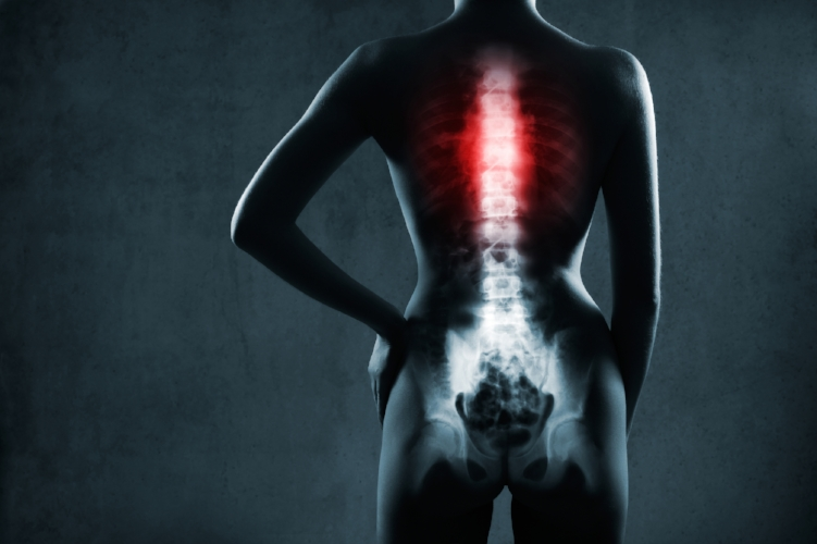 Spine Exercises for Health and Mobility