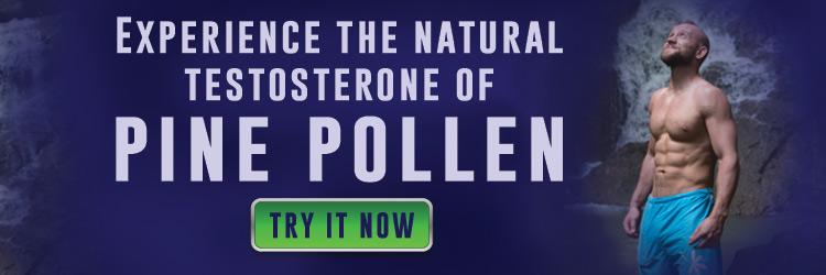 Benefits of Pine Pollen Testosterone