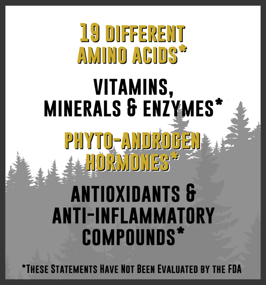 Nutrients in Pine Pollen