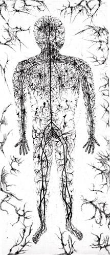 Nerve-Man.jpg
