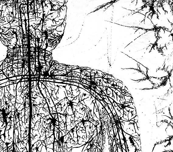 Nerve-ManDetails.jpg