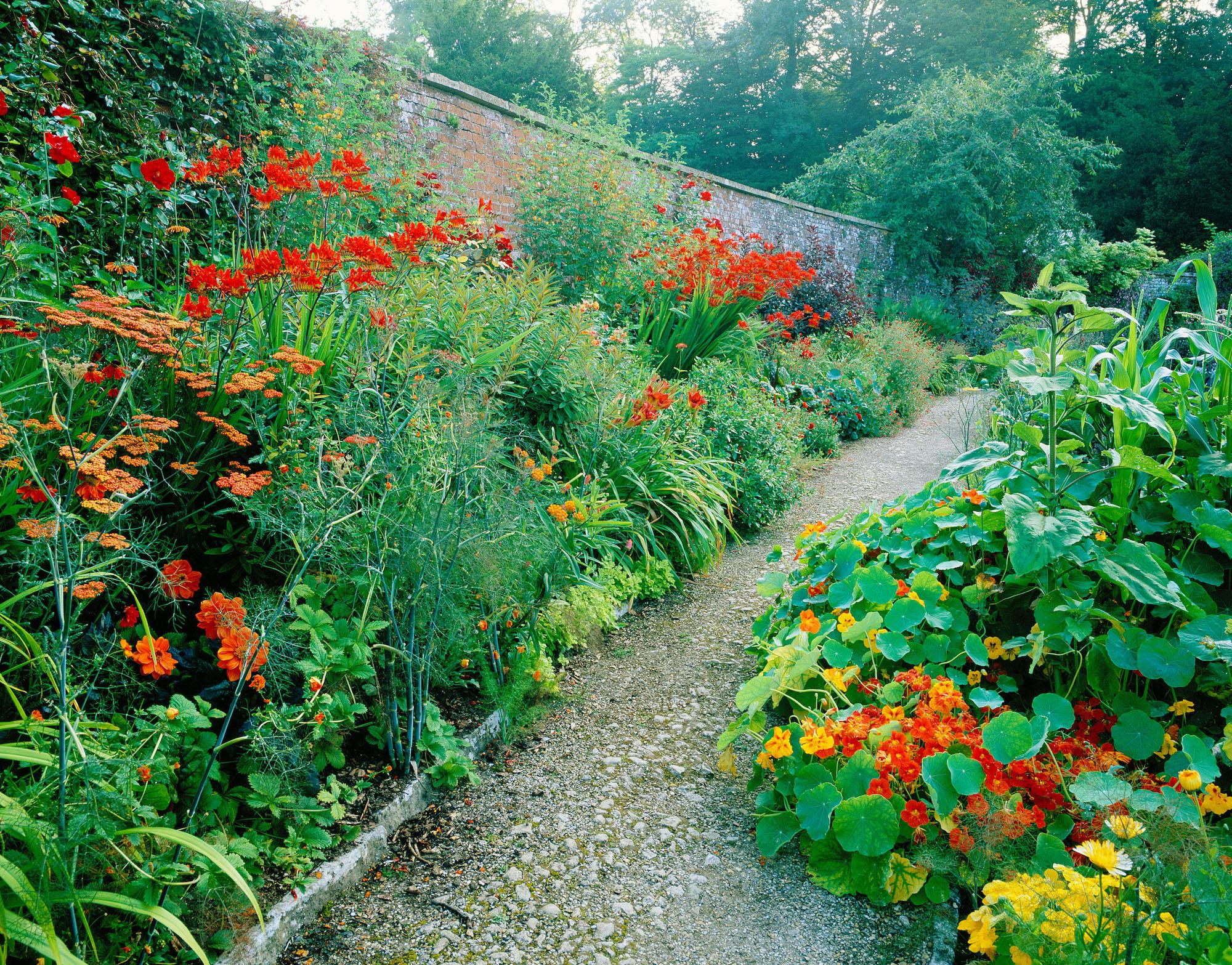 2a717c4a95e5 Noels-garden blog — Noel Kingsbury