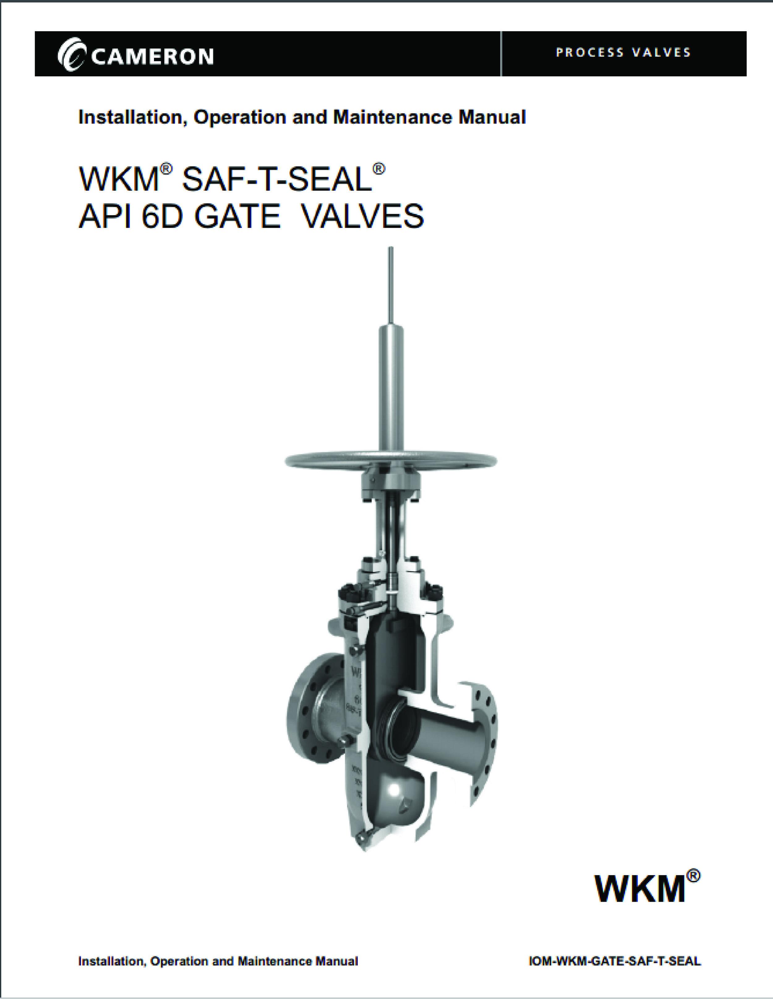 WKM STS_ IOM pic-01.jpg