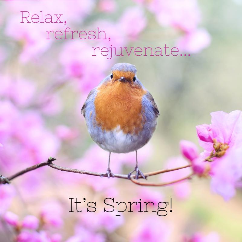 Relax-refesh-rejuvenate-its-spring-BOOSTABLE.jpg