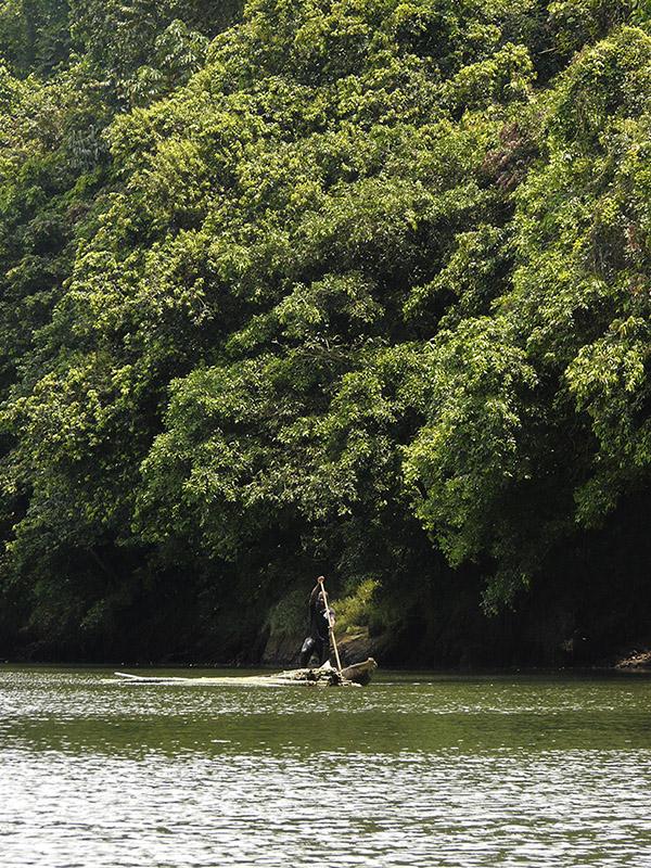 Cayapas Ecuador encuentro vida río.jpg