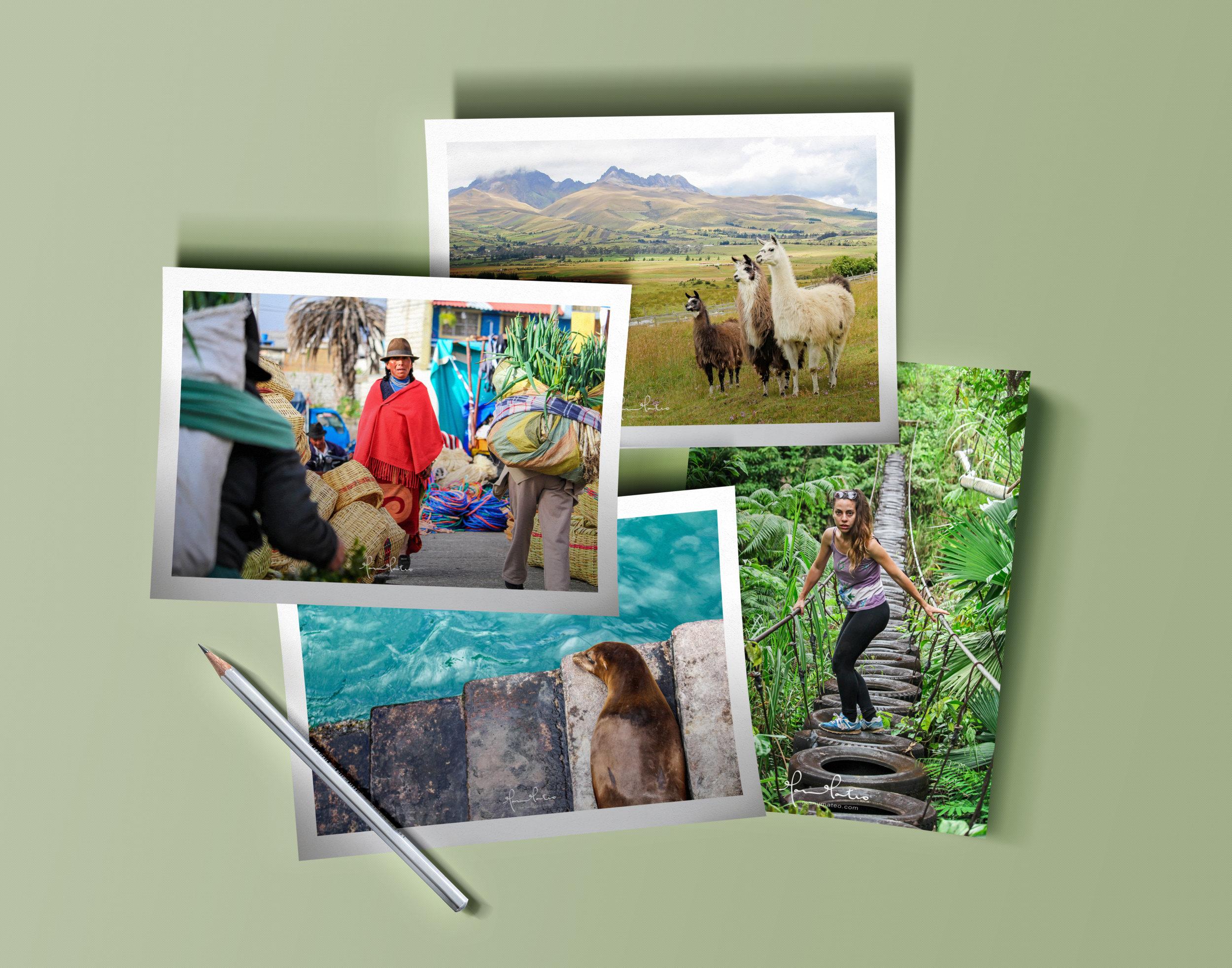 FOT Ecuador 01.jpg