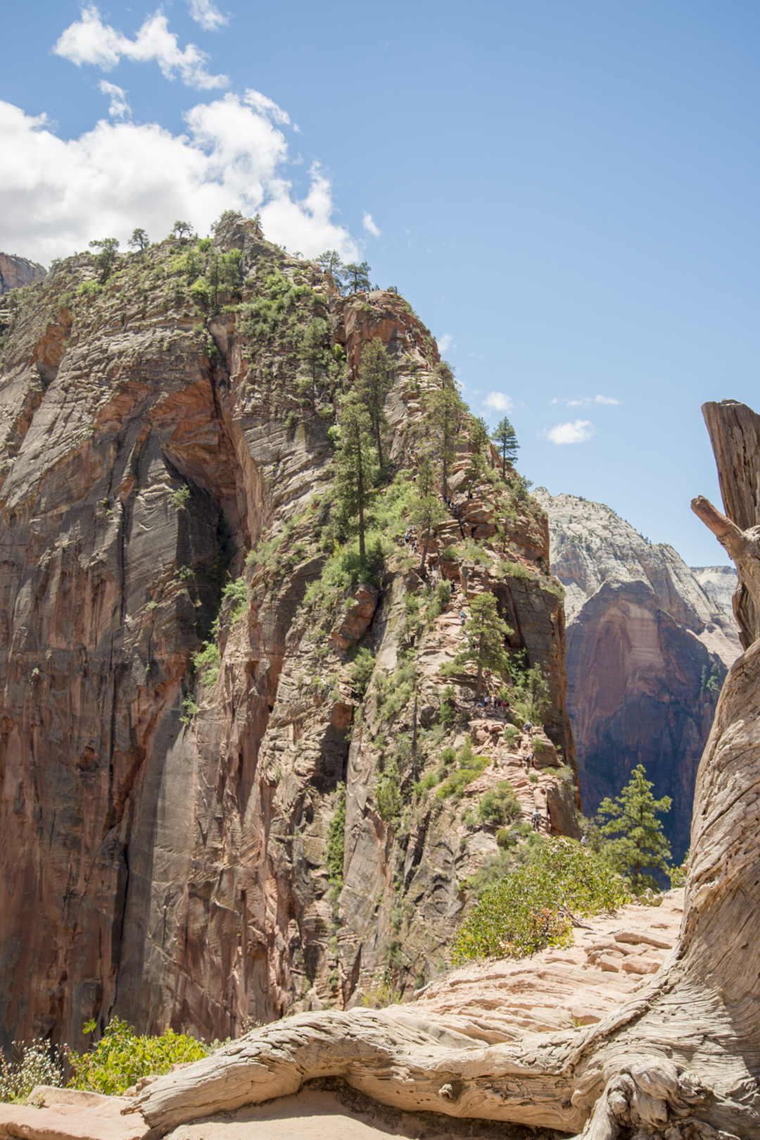 Angels Landing, Zion National Park, Utah - photo courtesy of Alexis and Margaret