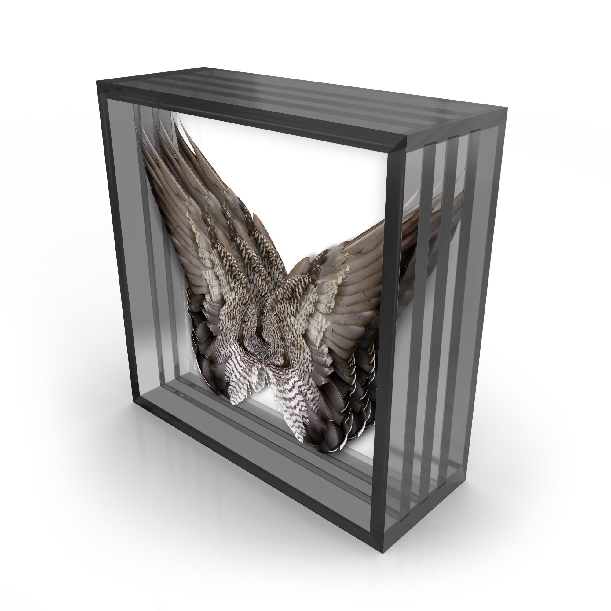 Wings.Smoke.3.jpg