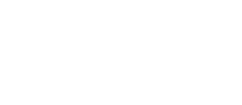 LoveView Weddings.png