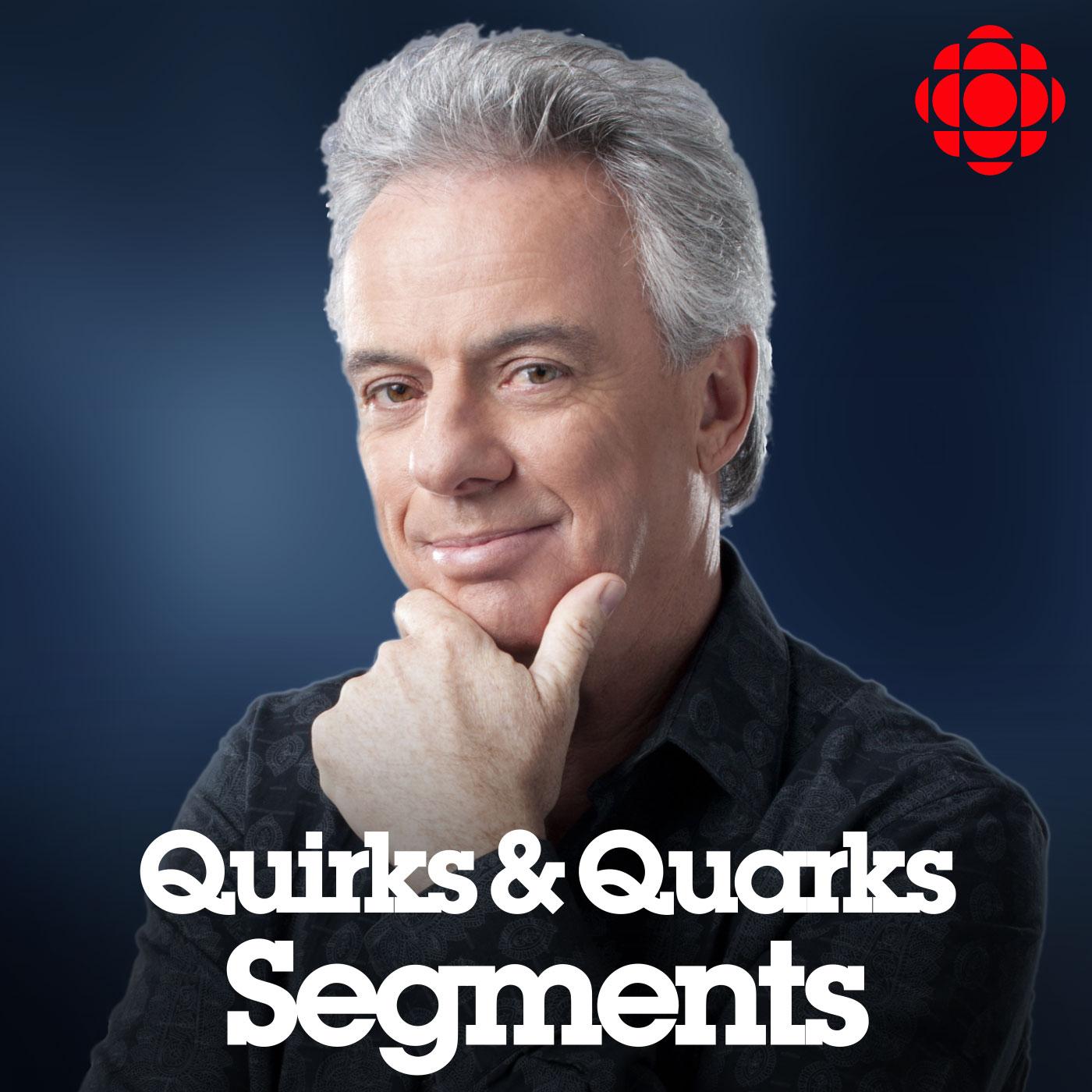 promo-quirks-segments.jpg