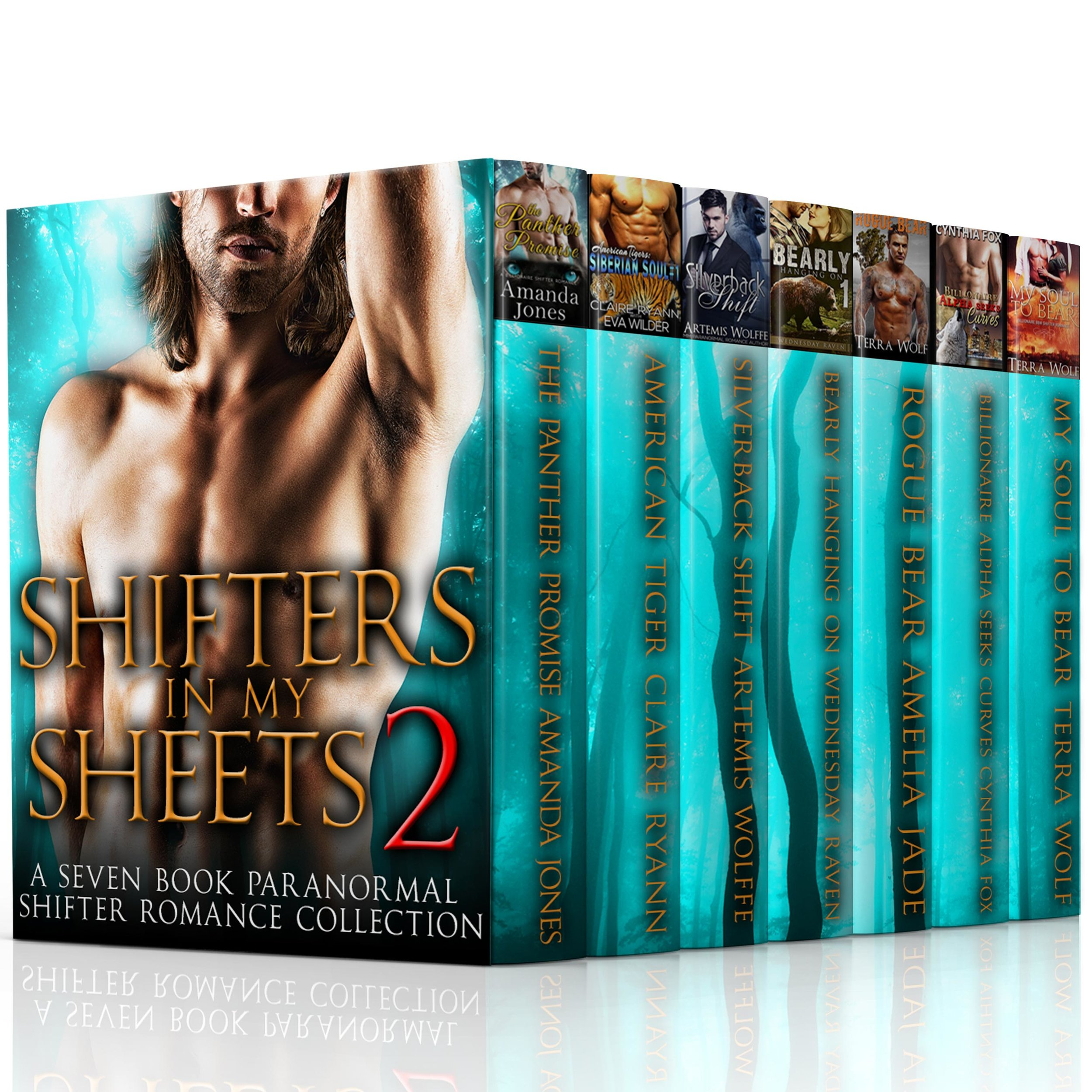 Shifters-in-my-Sheets-2.jpg