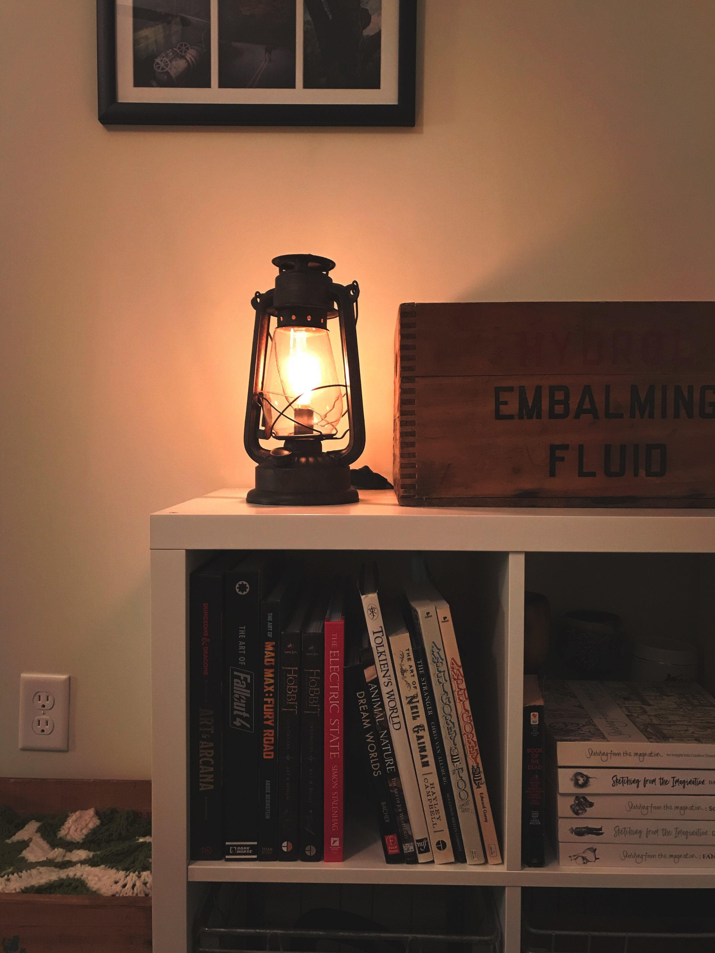 Got this  Rustic Lantern with an Edison Bulb  for next to my bed. It kicks ass. The vintage embalming fluid crate is our cat Bradbury's bed.