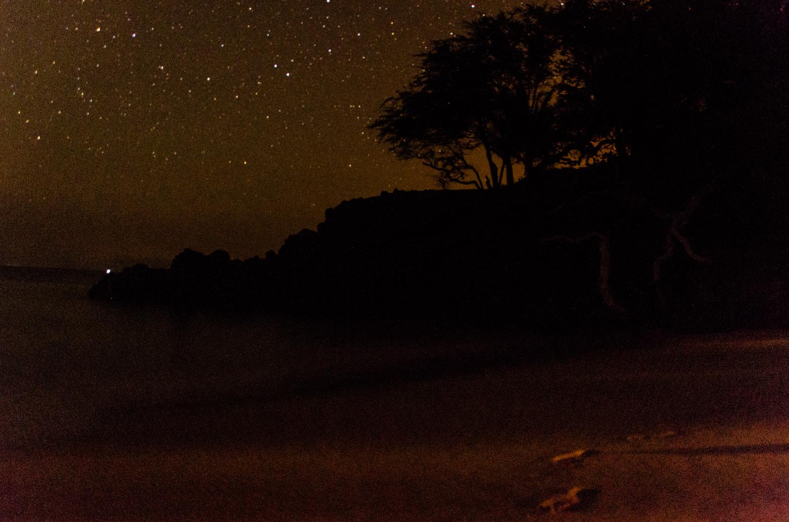 Goodnight, Beach 69.