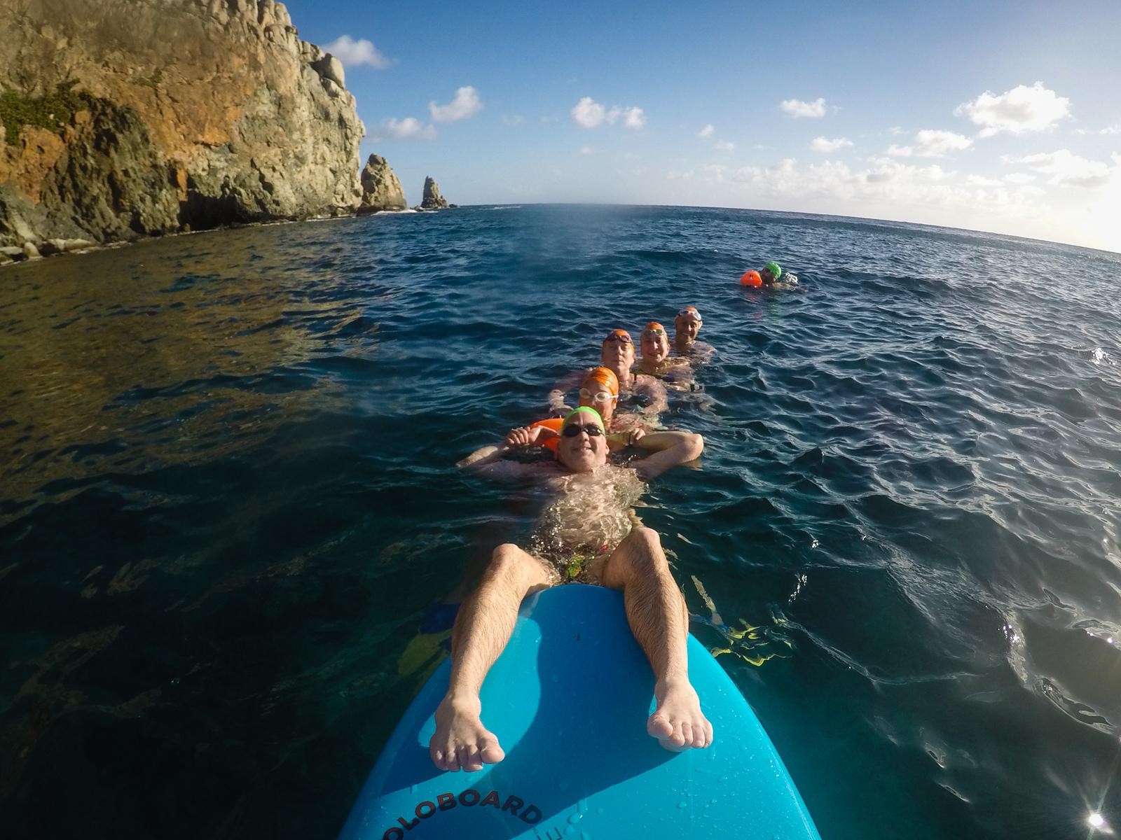 Spontaneous marine conga line on our Cooper Island swim.