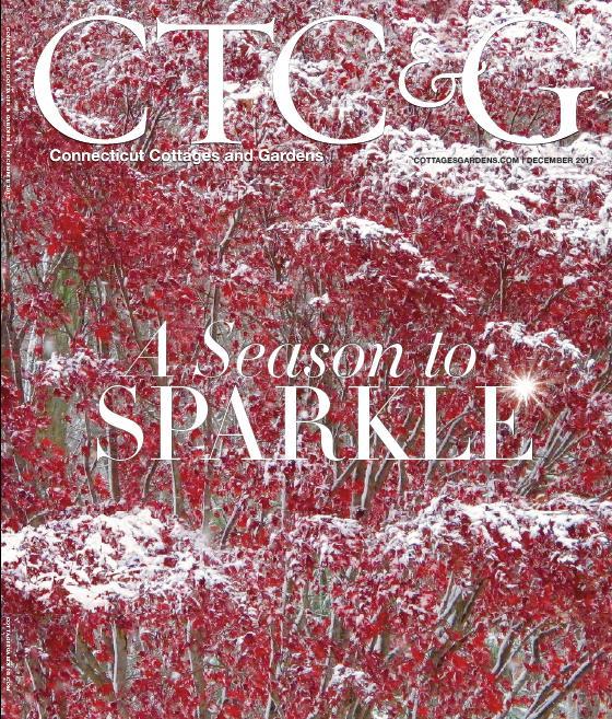 Cathy Graham Media Coverage 2017-2018_Page_51_Image_0001.jpg