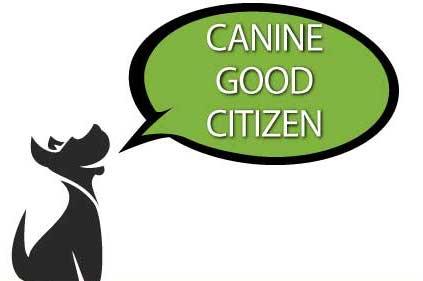 canine-good-citizen-min.jpg