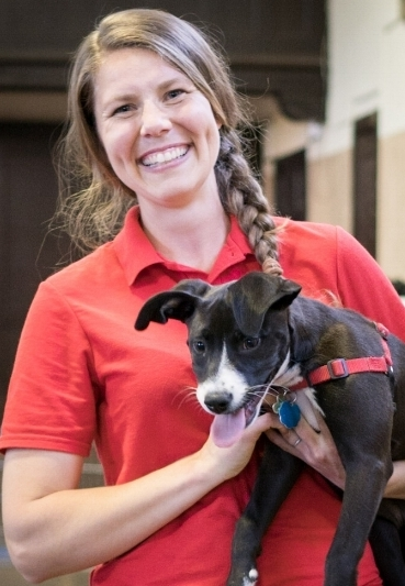 Anna Carlson Bravopoup dog trainer