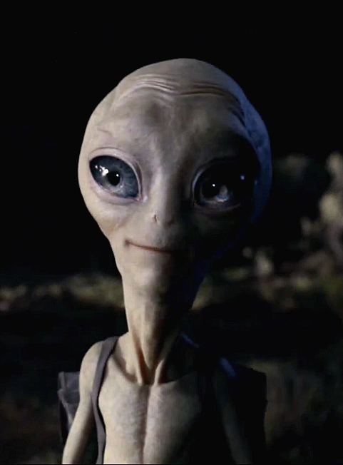 paul - UFO meaning and mystery - Alien Greys - Peter Crawford.png