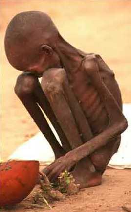 Starvation2.jpg