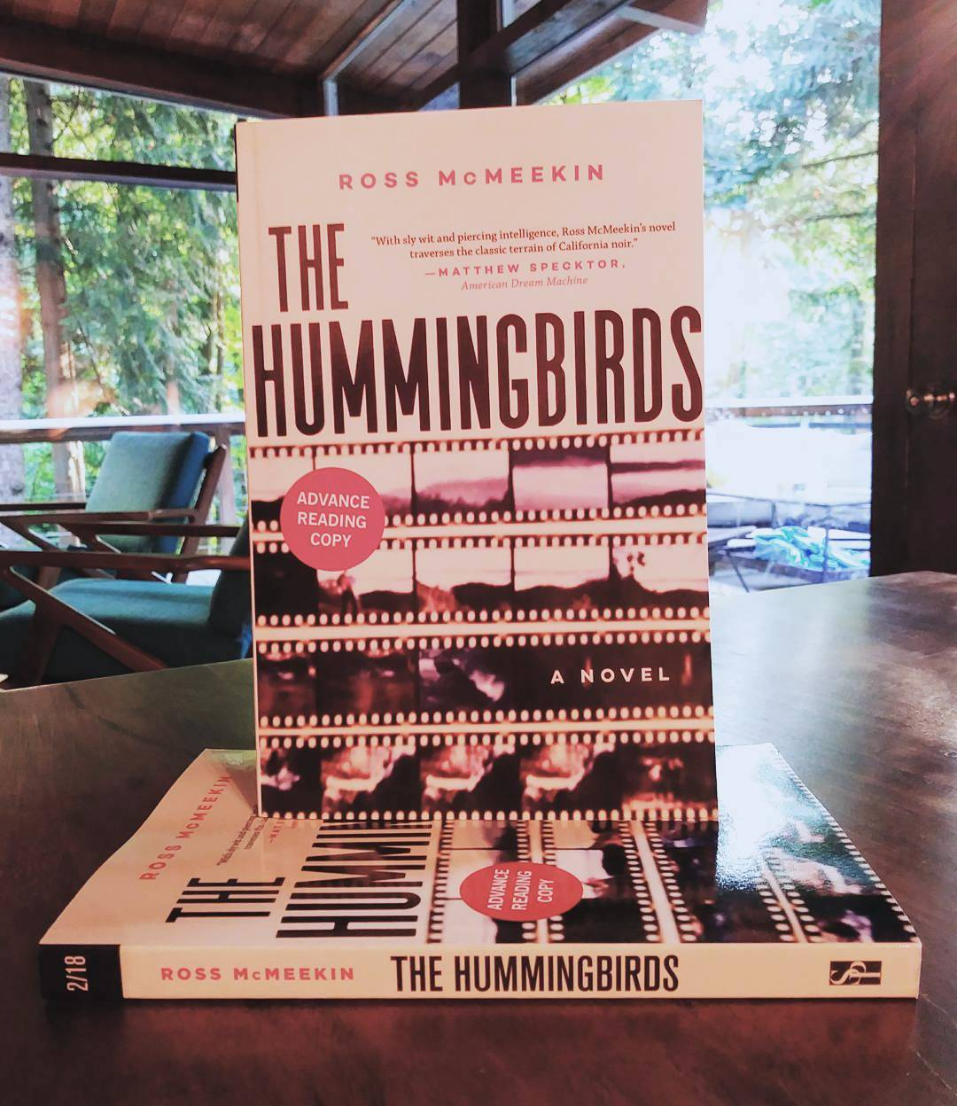 The Hummingbirds - ARC.jpg