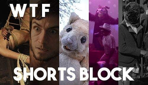"""We're delighted that EXSANGUINATA will be screened as part of the @nolahorrorff """"WTF Shorts Block""""! You're not going to want to miss this... #exsanguinata #exsanguinatafilm #nolahff #nolahorrorfilmfest #shortfilm #silentfilm #horrorfilm #horror #bathory #countessbathory #sabbathassembly #gretchenheinel #bloodritual #bloodmagic #ritesofpassage"""