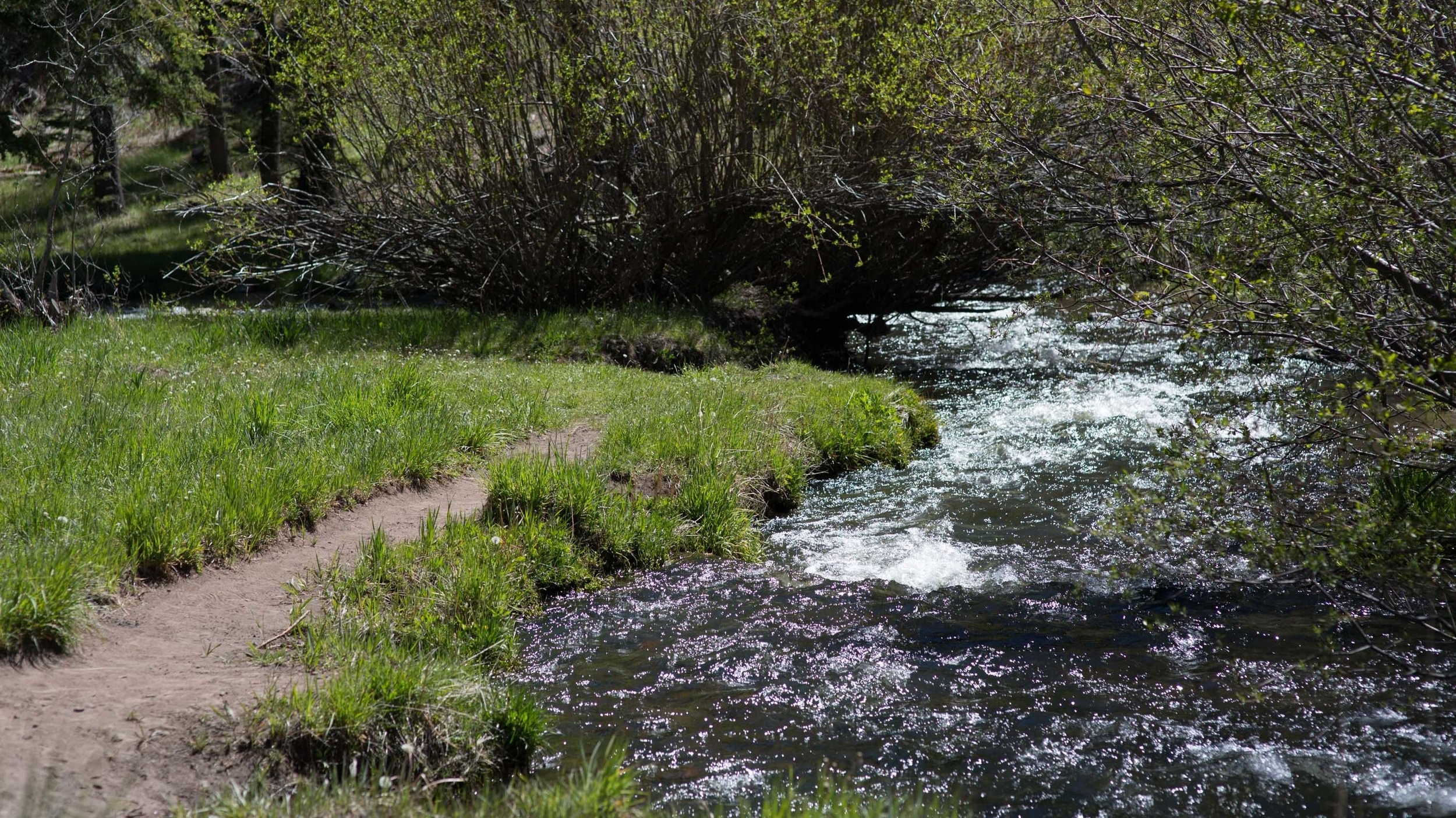 trail along Little Colorado River.jpg