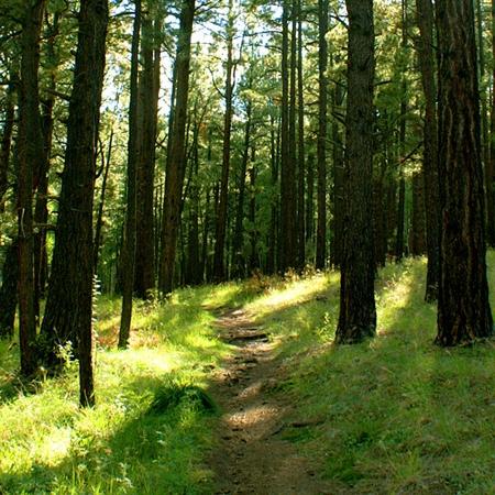 04_hiking_trails.jpg