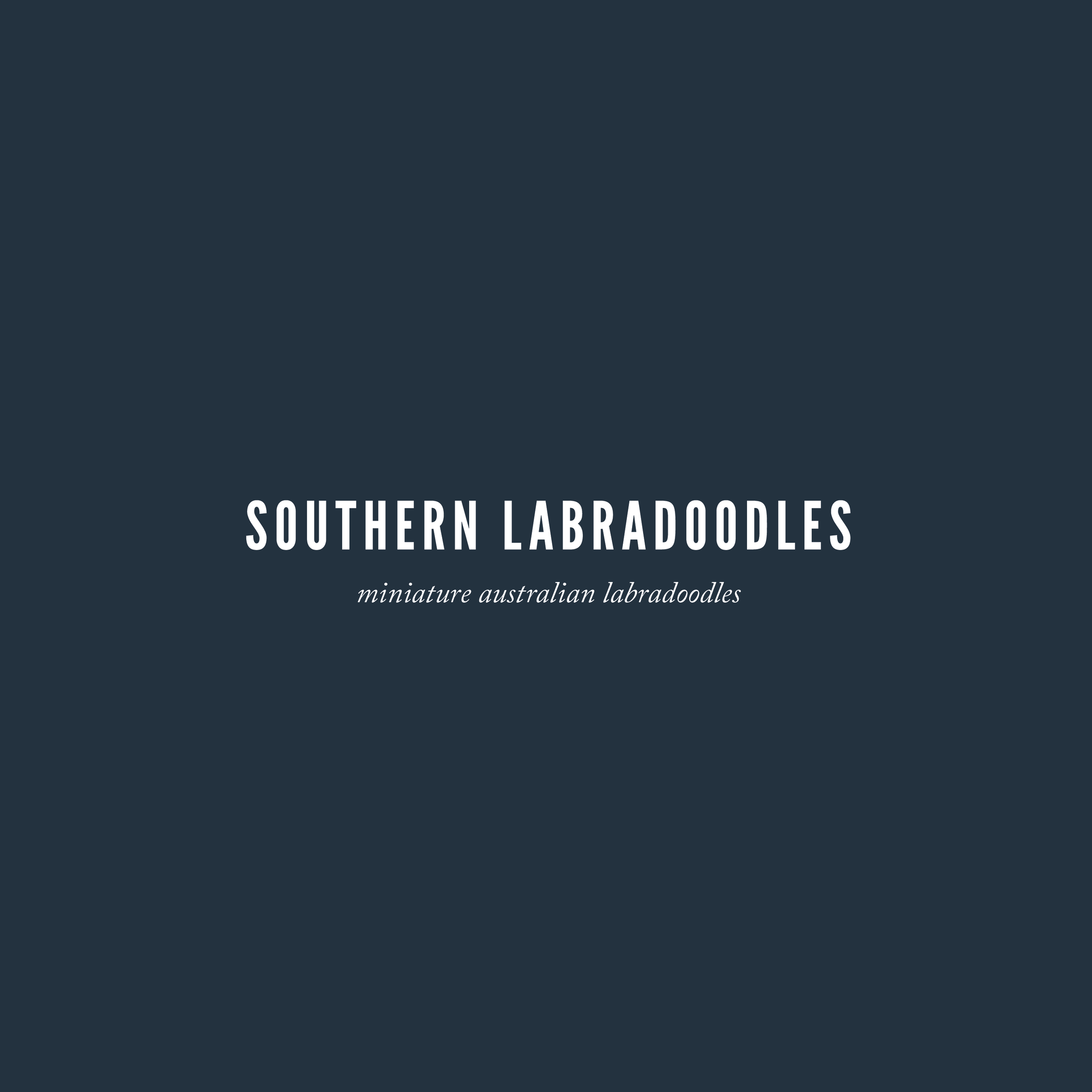 Updated Southern Labradoodles Brand Book-01.png