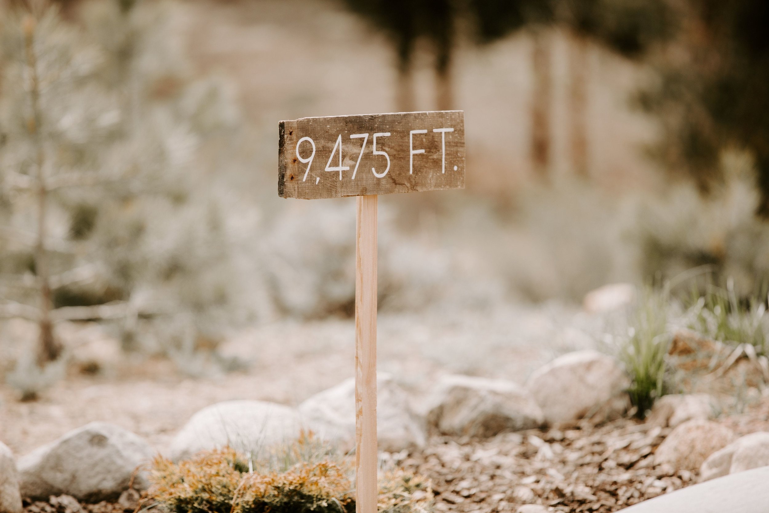 Kisa Conrad Favorites-0013the-wolf-den-twin-lakes-wedding-colorado-photography.jpeg