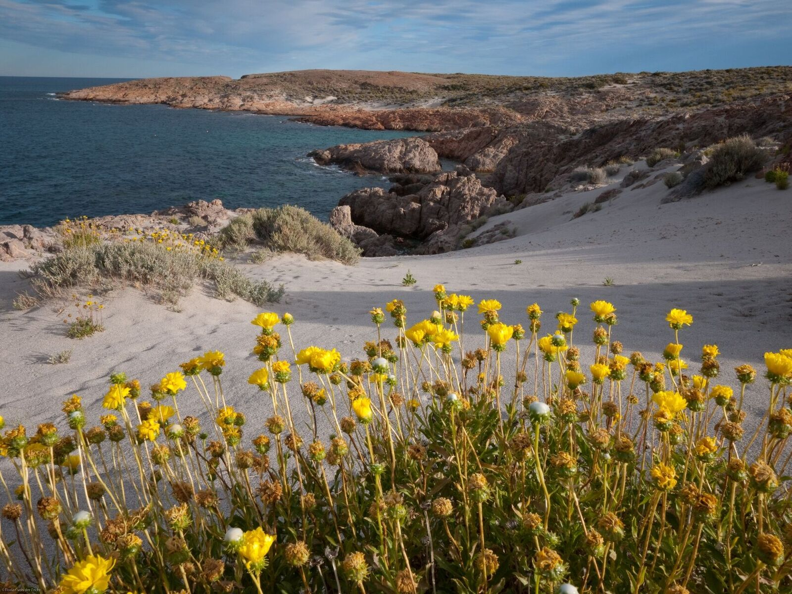 Coastline of Patagonia, Argentina