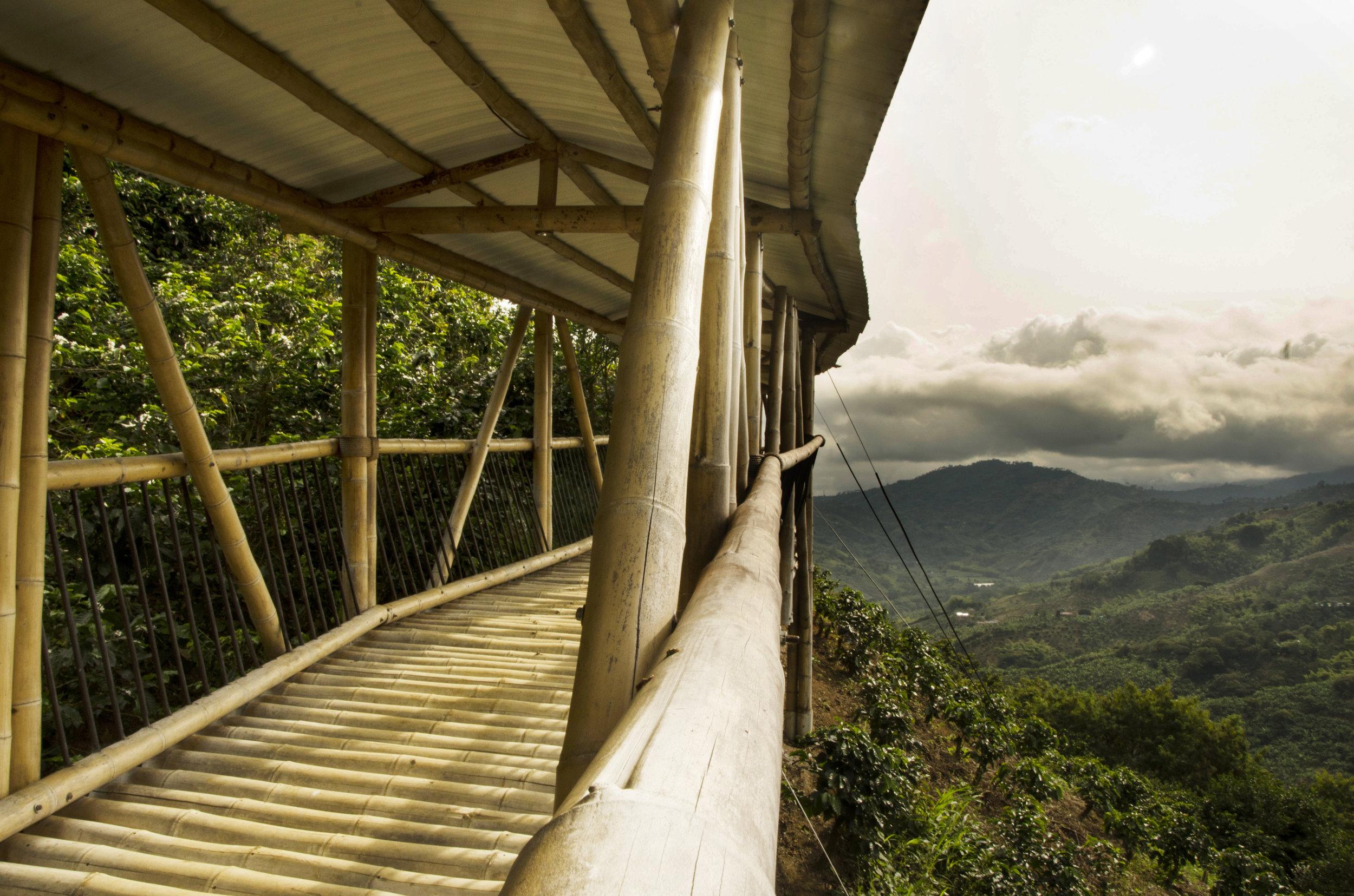 Hacienda Bambusa, Coffee Triangle, Colombia