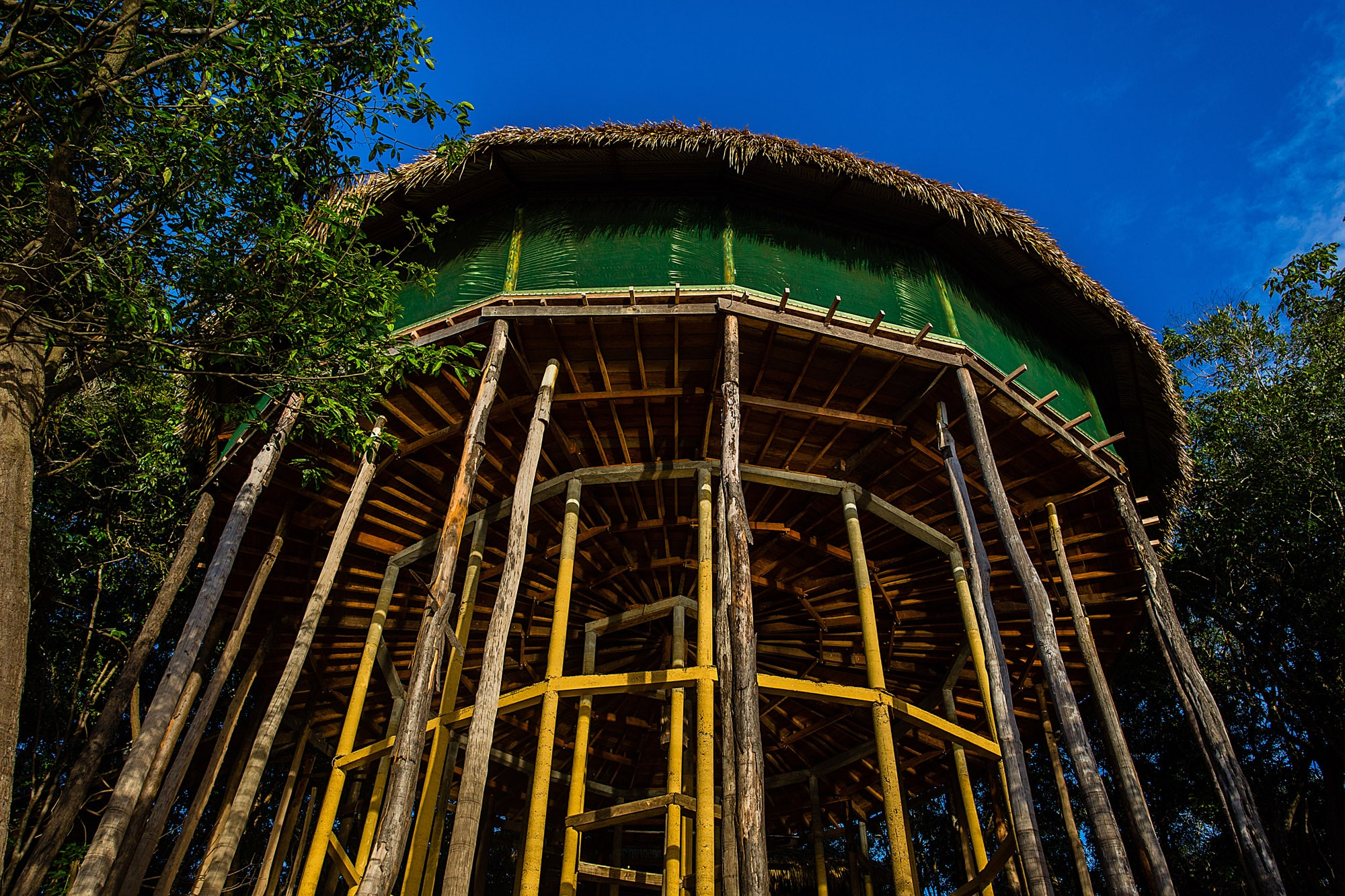 Treetop Hut at Juma Lodge, Amazon, Brazil