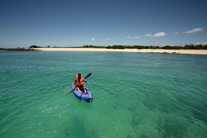 Kayaking Excursions in the Galapagos Islands, Ecuador
