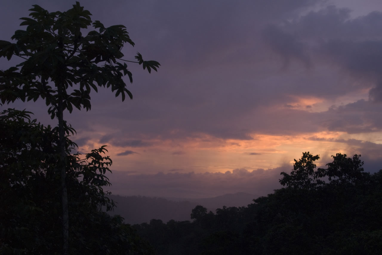 mashpi-jungle-lodge-andean-cloud-forest-sunset.jpg
