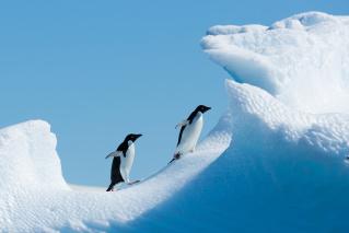 Day 2 - Flight to Antarctica