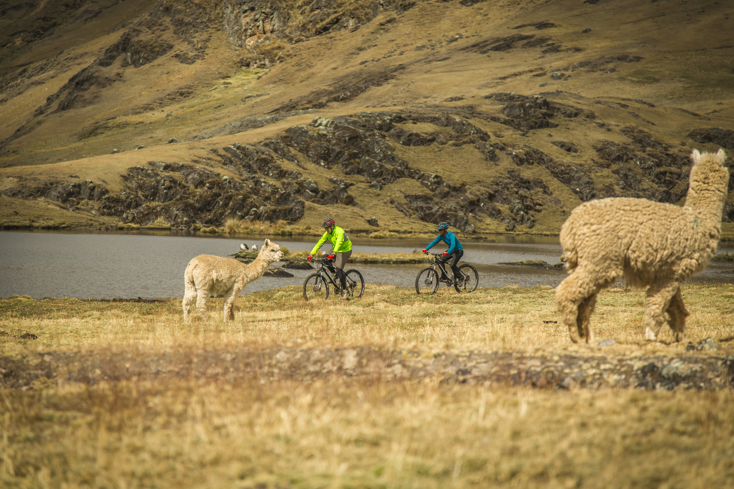 Biking excursions with explora Sacred Valley, Peru