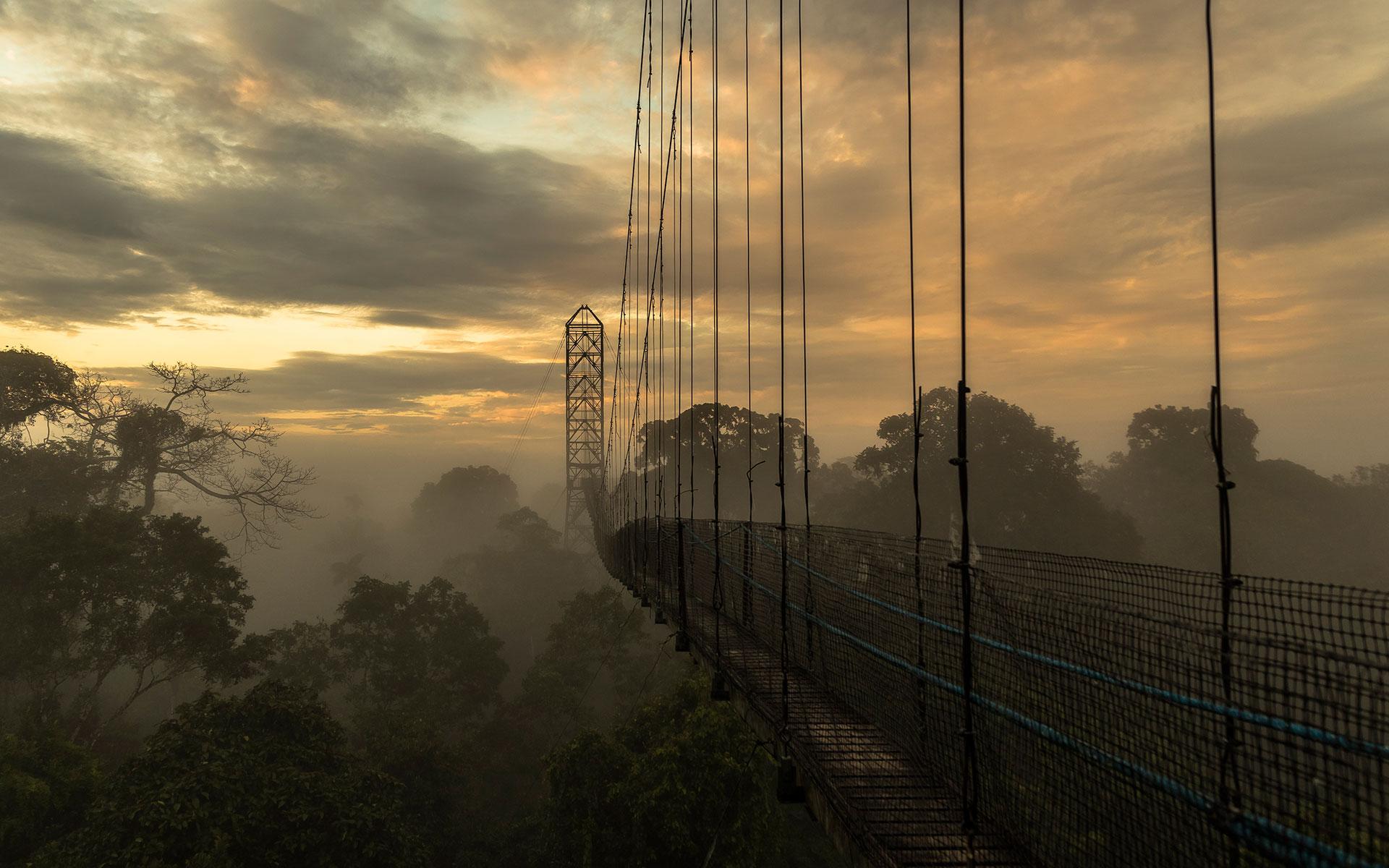 Canopy Adventure at Sacha Lodge, Ecuadorian Amazon