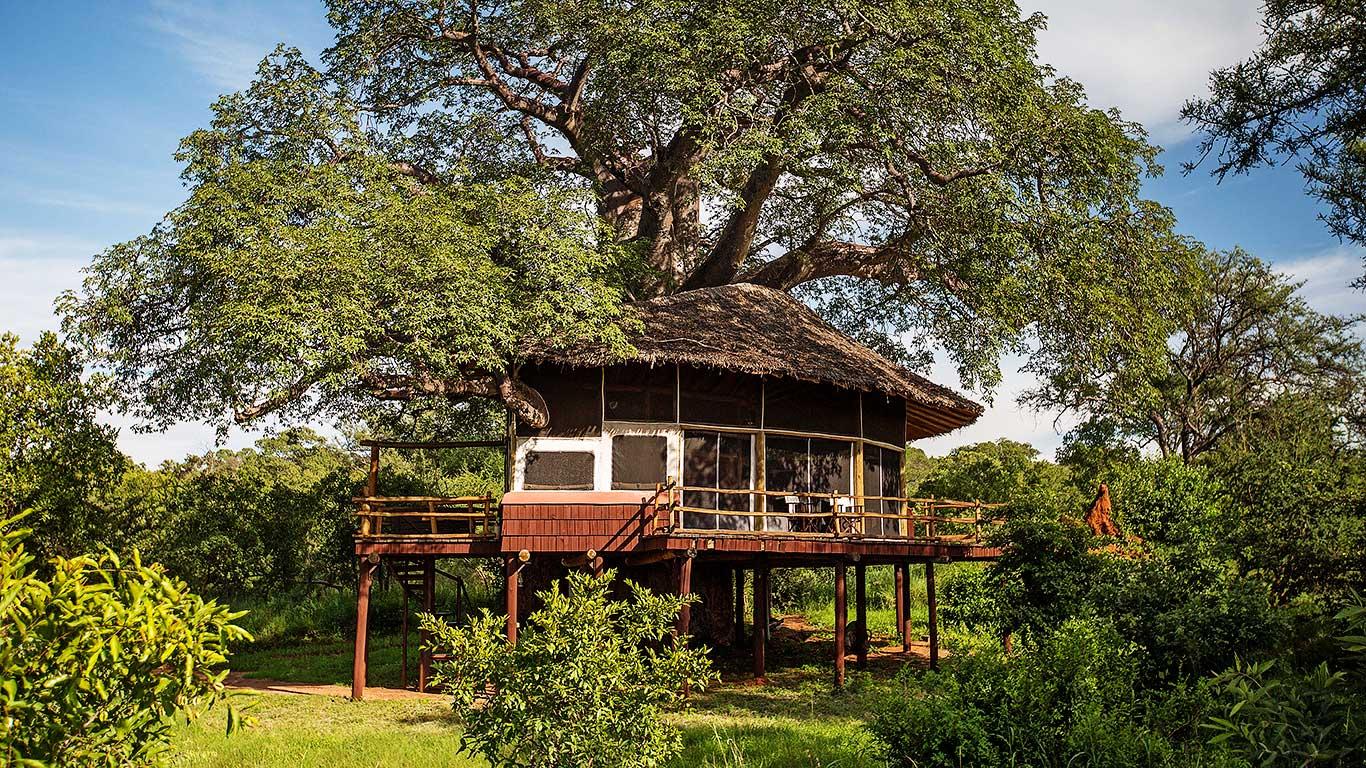 Accommodations at Treetops Tarangire, Tanzania