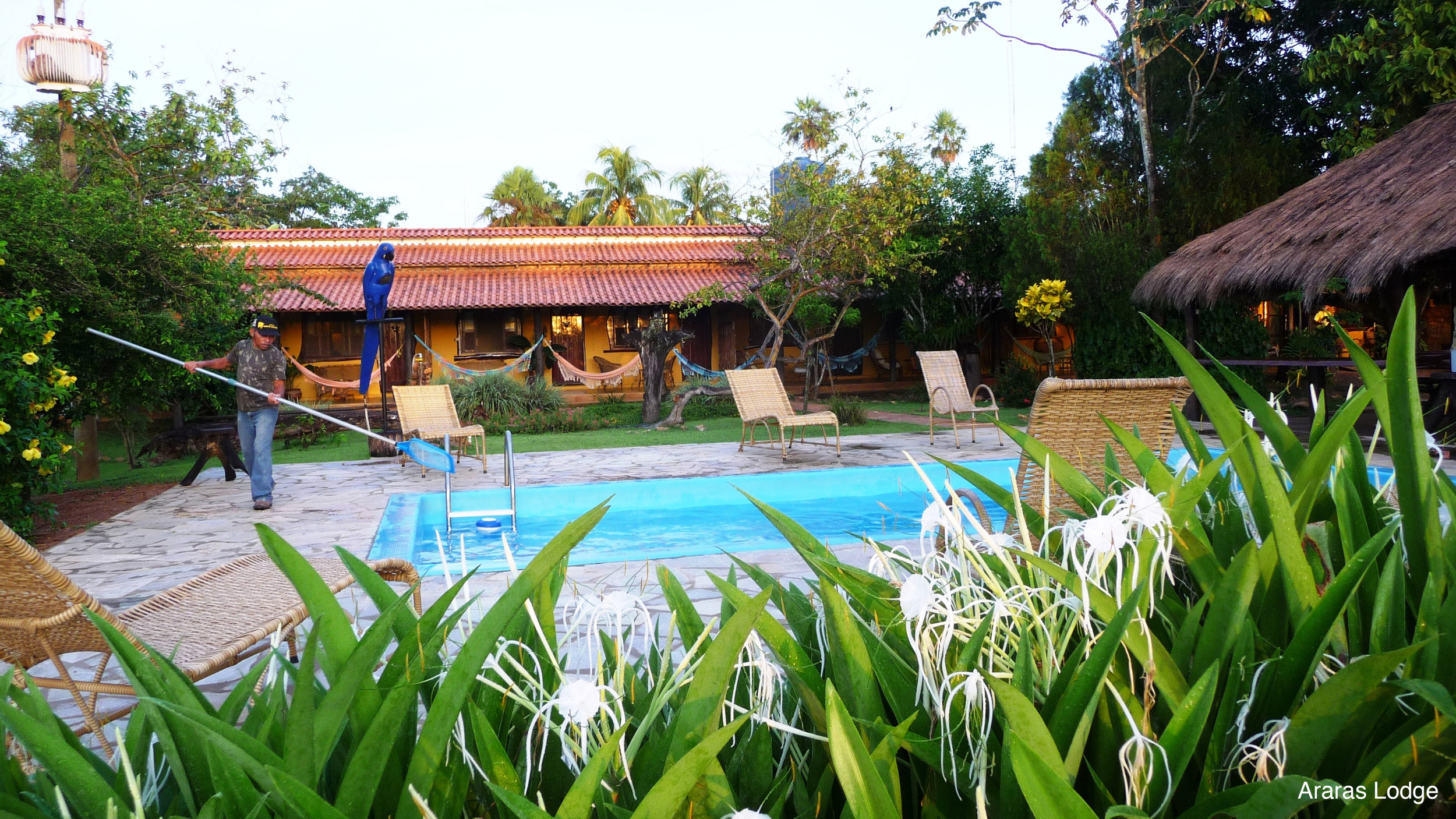 Pool at Araras EcoLodge, Pantanal