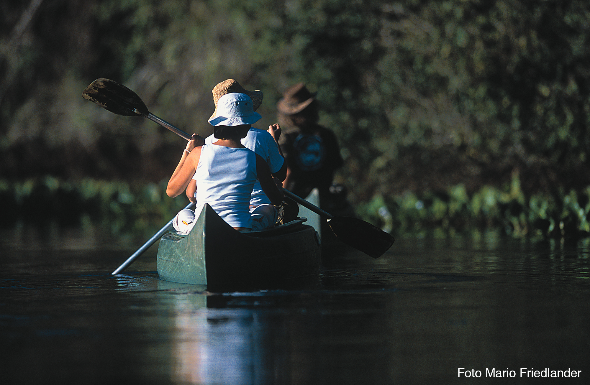 Excursions in the Pantanal with Araras EcoLodge