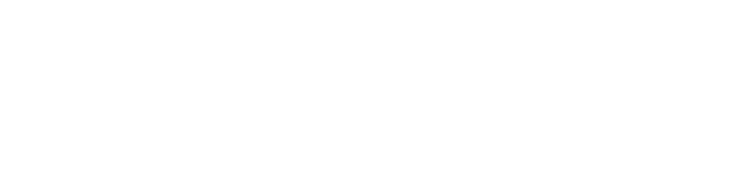 logo-bliss-white-widerrr.png