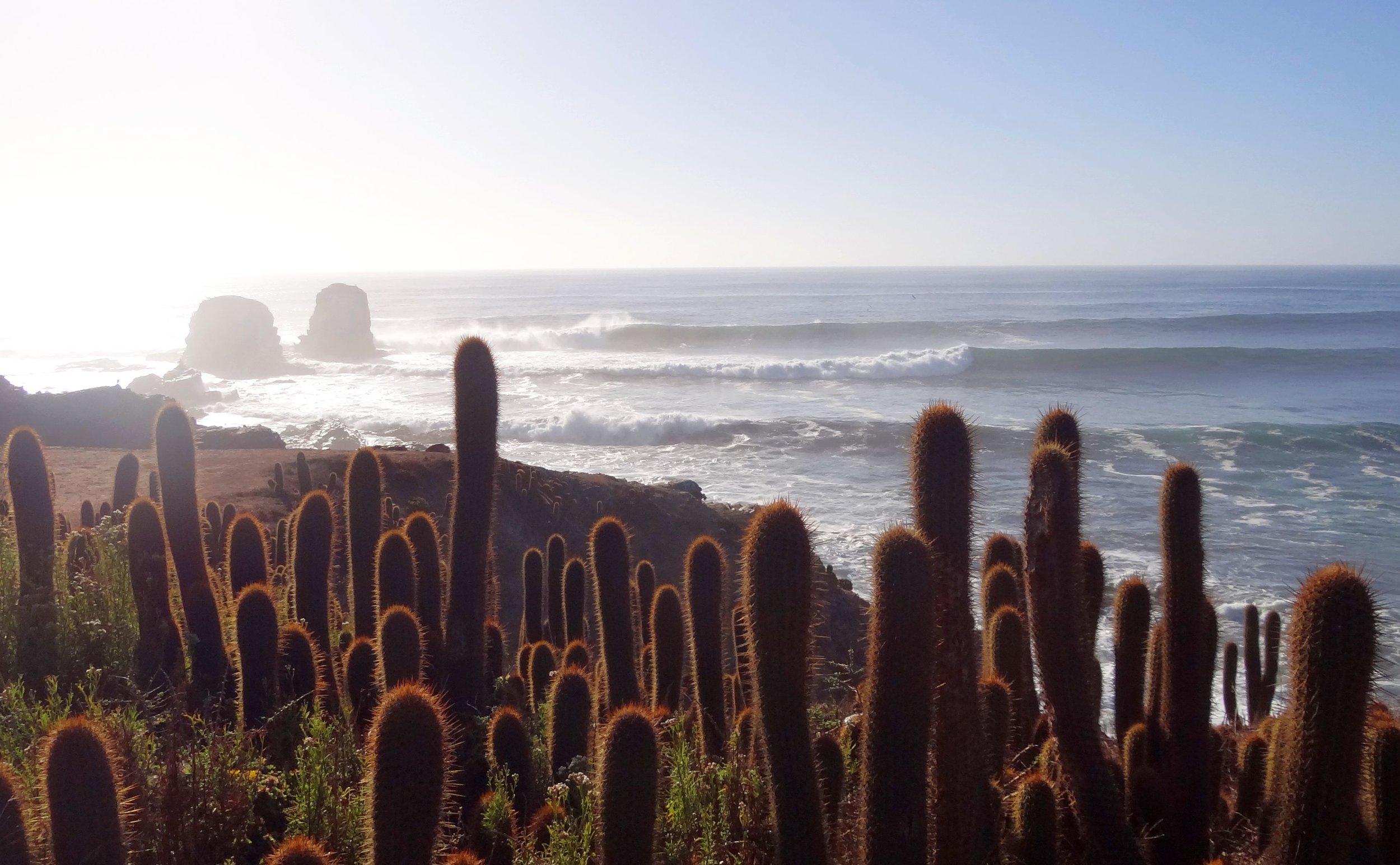 280212-Punta-de-Lobos.jpg