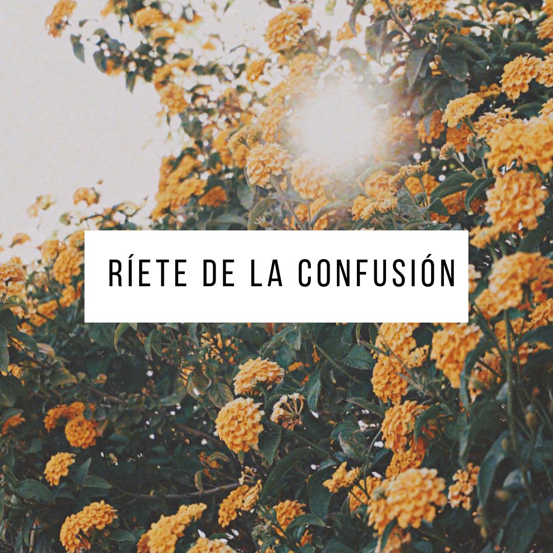 Reflexiones - por Camila Cornejo.