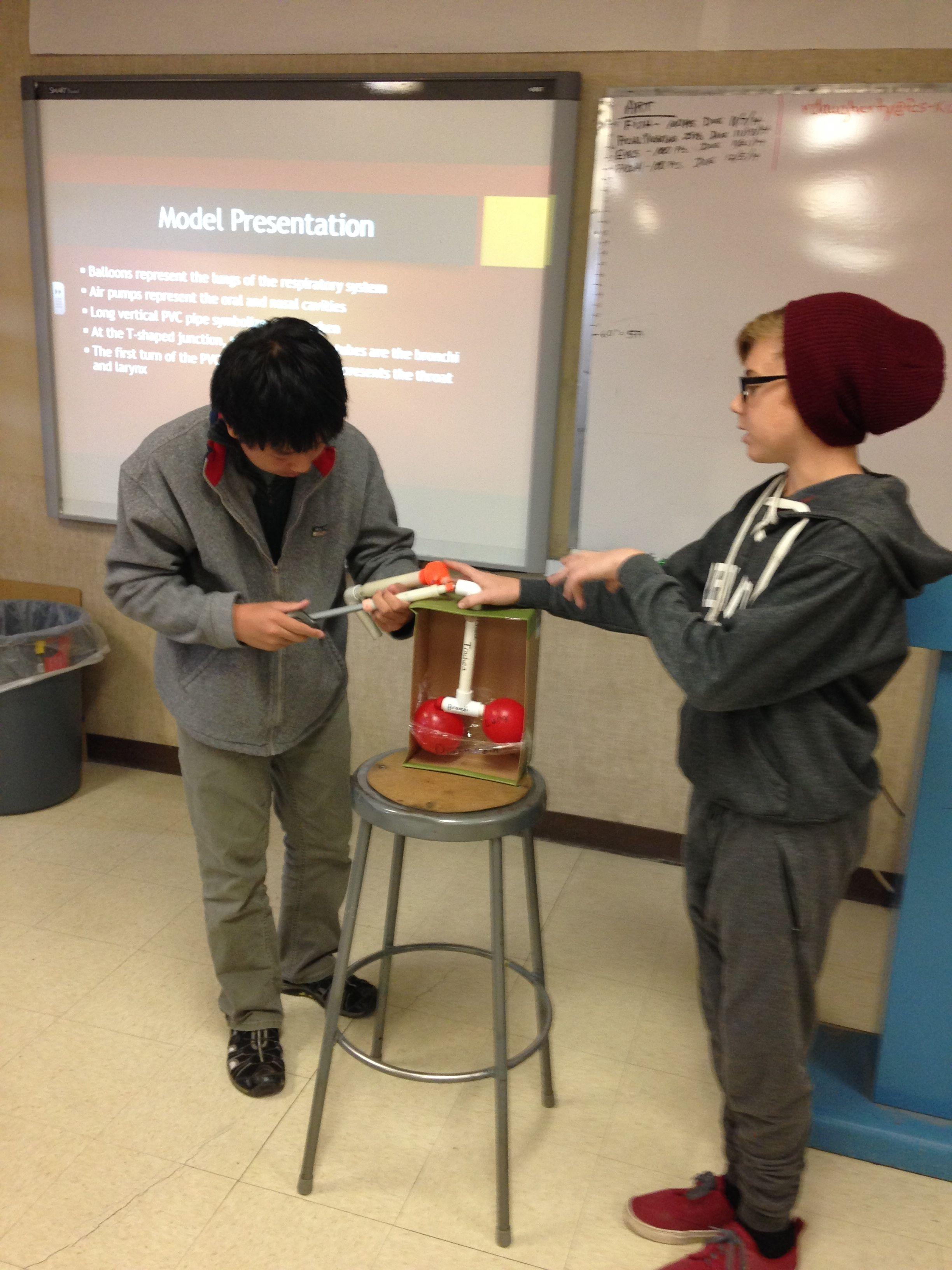 Freshman students present the Respiratory System