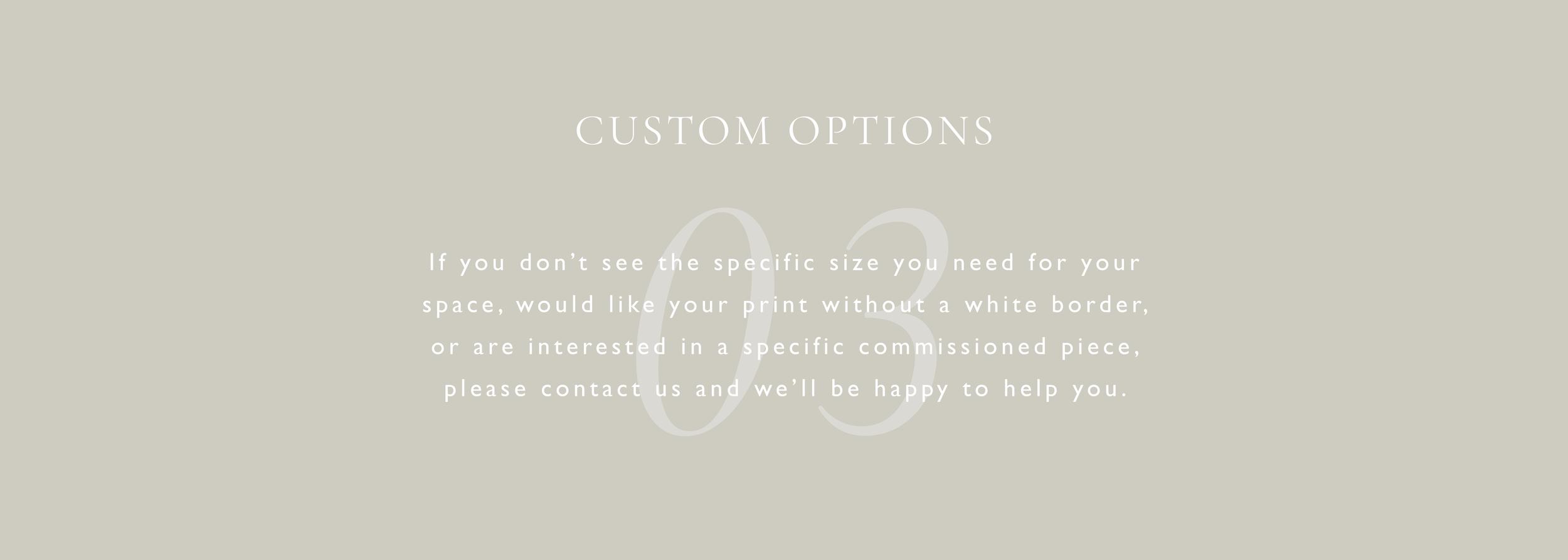 custom info 03.png