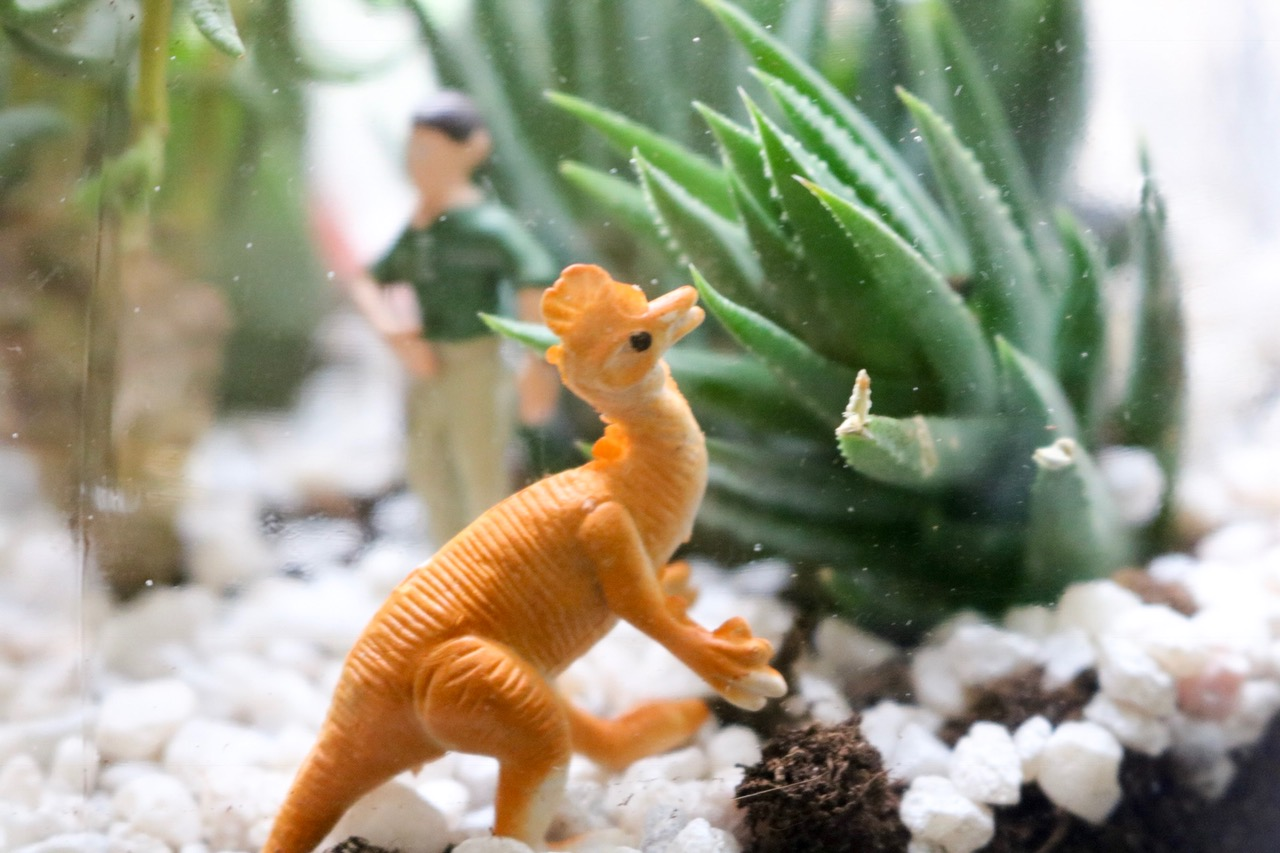 Easy DIY Dinosaur Terrarium #fishbowl #indoorgarden #plastictoys #succulents #garden #zengarden #easy